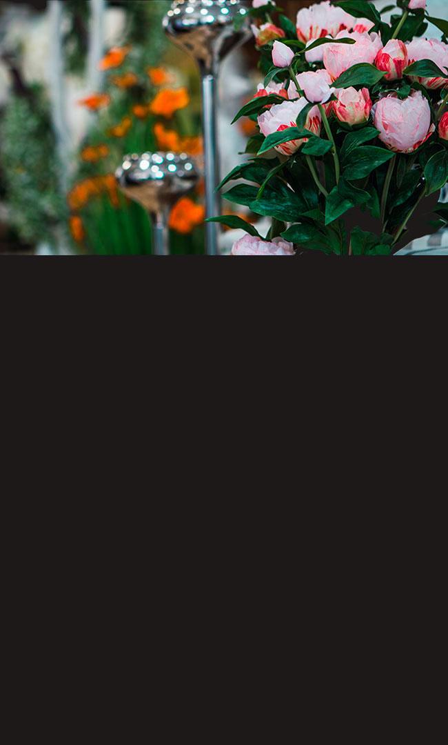 Plantas y flores naturales